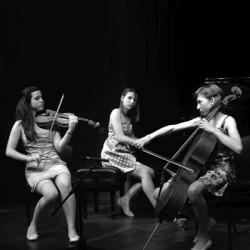 klavirski-trio-(2)manja-slak+ana-cop+zala-vidic