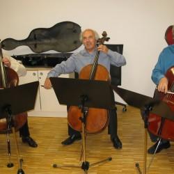 ljubljanski-trio-violoncel